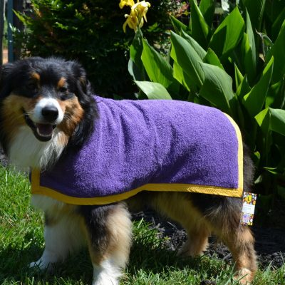 Terry Cloth - Solid Color - Dog Wet / Bath Robes