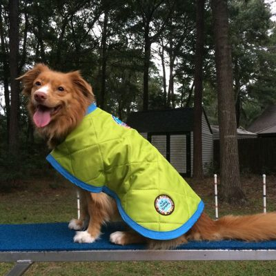 Dog Wet / Bath Robes - Water Repellent - Weather Jacket