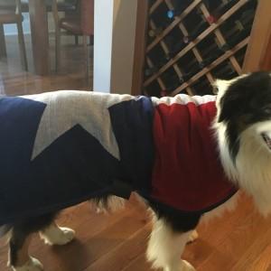 Texas Towel Flag Robe