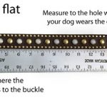 measuring using existing collar