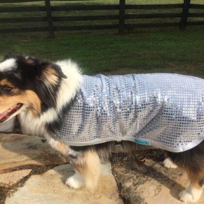 Dog Heat Reflective Shade Robe